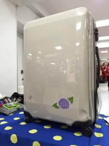 スーツケースペイント