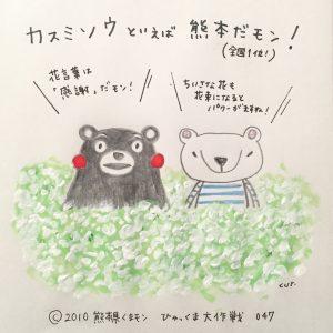 047 カスミソウといえば熊本だモン!