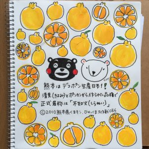 086 熊本はデコポン生産日本一