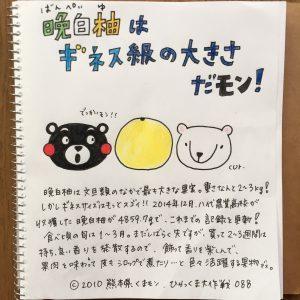 088 晩白柚(ばんぺいゆ)